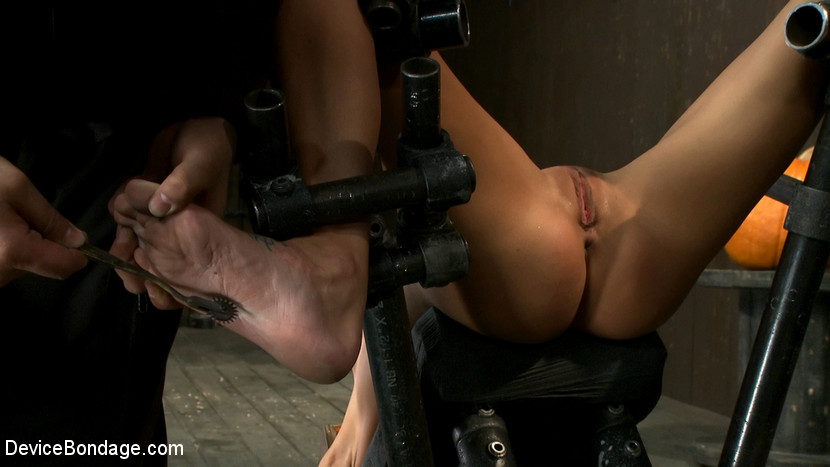 Female porn star jenna jameson