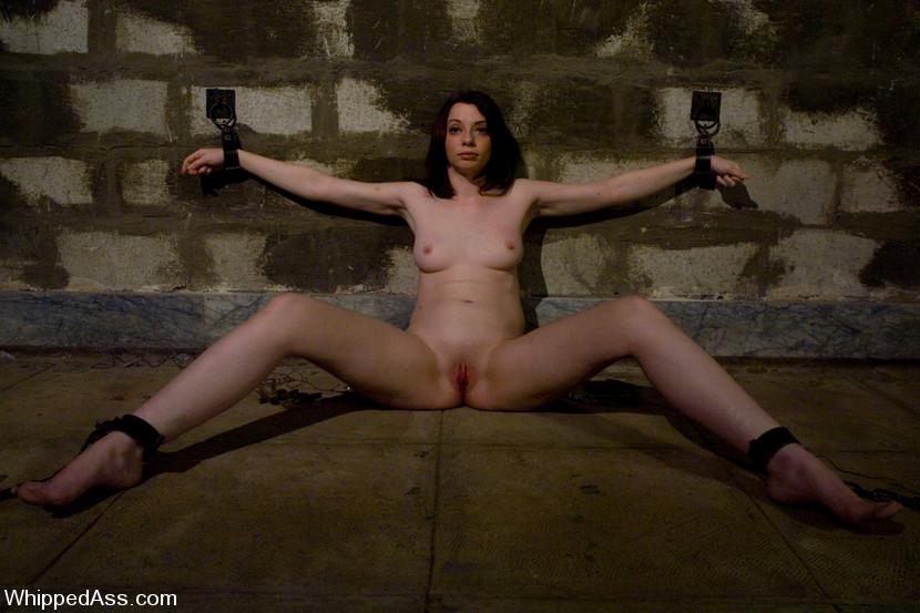 Big butt brunette porn