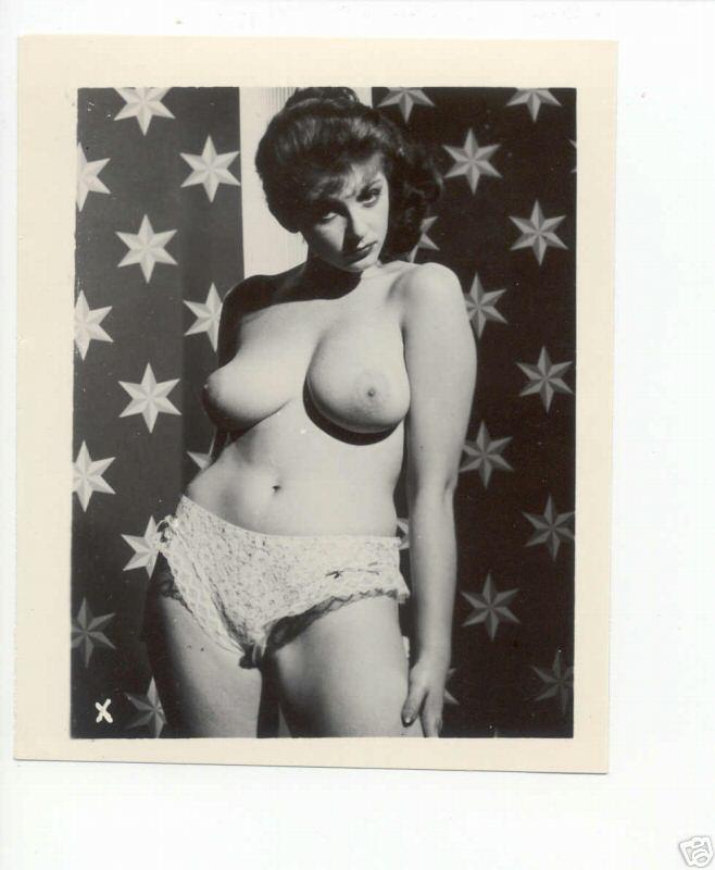 Retro vintage stag porn