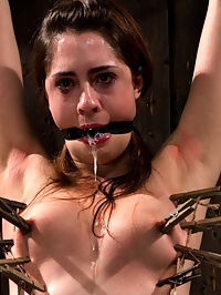 The Harder the Bondage the Harder they Cum Innocent Brunette Demolished best ways to give a blow job : Meet Lori Adorable, a 20 something year-old who has never been in porn. For some reason, she decided that here was the best place for her to start. Lucky her.I start off with a simple, yet tormenting position. Hands and ankles in wood stocks with hips pushed out. Over time this position becomes agonizing. Why not speed things up with some caning? Add some zippers with the hitachi smashed into her cunt and this fresh face has no idea what feels good and what hurts. Pain is pleasure.There is more than one way to overwhelm somebody. The sybian is one of the best ways to give a blow job do so. She is bolted down, arms locked into strappado. How many orgasms can she have? Her nipples are clamped and tied to the ground. She may only be relieved once she has yanked her clamps off on her own. And damn, does she look good trying.Lori has already been put through the toughest bondage she has yet experienced. So why not throw in some predicament? She is put into a custom designed metal bar system. Ankles are locked together, attached to her waist with her wrists. She is unable to move without applying pressure to the bound appendages. An ass hook is inserted, tied to her hair, to keep that pretty face in view. Watch her face of agony. Hear her whimpering sounds turn to boasts of escaping orgasms.