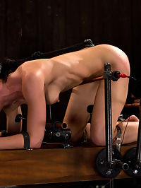 Hard Bondage Equals Hard Orgasms in the ass : Elise Graves. Sensitive flesh, sensitive feet, and a hot sobbing mess of a pain and bondage slut.Strapped down by metal into a doggy position, Elise has minimal movement. Add a few electrical bars in the ass mix just to make sure. She is shocked with every whip lash, every cane smack and every orgasm. After a short recovery, Elise is aggressively frog tied and in strappado with straps tight around her body. She is hoisted up in the ass air to dangle like my little sex ornament. I snap some rubber bands on her extremely sensitive feet and probe her with a dick on a stick. Her nipples are clamped and tied to the ground to keep her from spinning around. I watch as she struggles to rip them off or face the cattle prod.I finish Elise off with a single leg suspension. The other leg is frog tied and chained to the ground with her neck also tied to the ground. Any movement and she chokes herself. Then I cane her until those endorphins rush through her only to make her cum until she is spent.