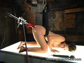 Starring Amber Rayne fucked by machines : Its a great day for fuckingmachines.com with the sexy Amber Rayne who fucks five machines at full speed, squirts all over the place and has orgasms so big, long and intense that she is shocked and spent by the end of the day.Almost every machine we put in her pussy goes in her ass and even she is surprised by how much she squirts with the machines. Amber challenges herself to keep increasing dick sizes with each machine until she is fucking the Jeff Striker dick on the Crystal Palace. She cums so hard in this standing position that she flops to the floor! But were not done the set finishes with Amber on the ground being fucked by machines a hand held dick and the magic wand until she is completely tossed. This update is not to be missed.