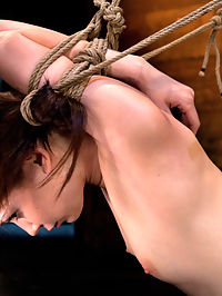 Severely bound into a brutal hogtie and pulled to the breaking pointMade to cum over and over! masturbate to this : Welcome back Sensi Pearl to Hogtied. We decided to put this shoot up as a preview masturbate to this Saturdays Hogtied live show that Sensi will star in. We bind Sensi into a hogtie. Not just any hogtie, but one we can keep tightening. Almost like an anaconda, we can tighten the tie, slowly bending Sensi to the breaking point a slow suffering that tests even her amazing flexibility. But thats not all. Not only does Sensi have to deal with the constrictor bondage, she has to deal with foot caning, nipple torture and ass flogging. As if that werent enough, as we make the ropes tighter and tighter, we also vibrate her to multiple nonstop orgasms! Sensi cant stop cumming, and with it, the pain of the ropes intensifies.