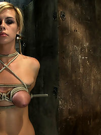 Category 5 Suspension, Made to Suck Cock and CumAll Tying on Screen, Amazing live rope bondage! sexiest women in the world : Live Show Mondays brings you part 3 of the July live show that featured Tara Lynn Foxx and sexy co-top Isis Love. Tara is into her third scene of this non-stop live Hogtied show. She has not had any breaks since we started. Hogtied is the only place sexiest women in the world where you can see this sort of show live as it happens. All tying is done on screen and nothing is hidden from you. Its Live!After the last scene, a member requested to see one of our famous hogties. We hate to disappoint the members so we made this little category 5 suspension on the spot. With her breasts tightly and cruelly bound, her elbows cranked back together, her ponytails tied to the pole and her big toes bound into it, this is one bad ass Hogtied, if we do say so ourselves. Isis makes Tara cum over and over, and Matt jams his cock down Taras pie hole. She takes a good face fucking while cumming, multi-tasking is strong with this one. After she seems exhausted from the ordeal we decide to suspend, and watch the whore suffer...
