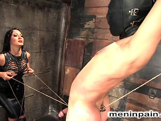 Painful Predicament in the ass : Mistress Sandra Romain taunts Lefty while he suffers in painful predicament with his hard cock tied to a wall and a hook up his ass pulling in the ass opposite direction.When the pain becomes too much, he is bent over and fucked up the ass to strip his manhood, and finally his cock is used and drained for Mistress pleasure.