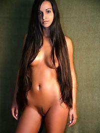 Erotic brunette beauty showing her elegant naked shapes