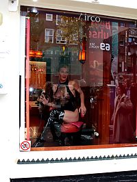 Amsterdam window hooker pleasing a tourist his stiffy cock