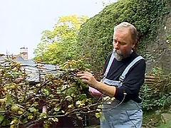 Jolanda and Bert : Old gardener sprinkles his warm seed over teenage brunette