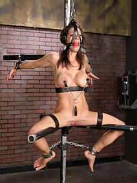 Little Angel shocking bondage. : We feed our Little Angel addiction this week and line her up with Bane on her second StrictRestraint shoot...our fondness for Angel grows everytime we shoot her...she has a great sttitude, loves tight bondage and is truly tough and submissive...Bane begins her day with an electric shock predicament...an electrified copper plate under her tits...when she is forced to relax her back, her tits pay the price..at one point it becomes futile, when her back is too tired to flex...she sets her tits down and bares the shock...Bane toys with her pussy and ass through the process...in the next scene, angel is spread wide open...Bane brings her to orgasm with finger work like hes cooking a two minute egg...he walks away leaving Angel breathless...then he begins impact play...ending with his zip tie drill whip...extreme sting, little effort...Ogre