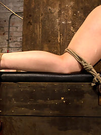 Girl next door bound ass up. Double penetratedSkull fucked and caned, vibrated 2 multiple orgasms : Welcome Back Serena Blair to Hogtied. The perfect girl next door type could pass you in the street and you would never think that yesterday she was a helpless bondage slut on the internet.Bound with her perfect tight ass up, Serena is open and helpless. We cane her sexy ass and legs leaving nice red welts. We finger fuck her ass and pussy and then DP her tight holes with huge cocks. A vibrator makes her cum over and over while Double Penetrated. After fucking both her ass and pussy and making her cum over and over we make this exhausted girl take a brutal skull fucking. Face fucking helpless girl next door types is our specialty!