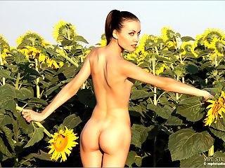 Marta Flowers in the Field