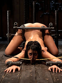 Bountiful Orgasms with Brutal Bondage : You saw Lyla in a live show, now see her on her own. Tough and willing are attributes admirable out of an up and coming bondage slave of your dreams.She begins locked into the A frame with her legs and arms spread and her ass on the floor. Any movement yanks on her neck or fragile wrist and ankles. She can squirm and wiggle all she wants, itll cost her though. This gets put to the test when her nipples are clamped then tied off stretching her titties out. She is whipped and vibed, made to rip off the clamps at orgasm.With her ass up, face down she is ready for a fucking of a lifetime. She is bound into position with the metal bondage pipe system with just enough movement to express the ferocious fucking shes about to endure. Whether she wants to or not, orgasms will be brutally fucked right out of her by Alpha. Machines never tire.Now that her pussy has been violently fucked its time to stimulate her clit into oblivion. What better way to do so then with an upside down sybian suspension. Some girls cum heavy and hard, other girls cum long and steady with rolling orgasms. Find out which kind of orgasms are induced when Lylas mind and body have been depleted.