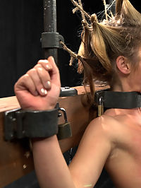 Sheena Shaw - Rough Rider : Welcome Sheena Shaw to Device. First up, we waste no time in exploiting her natural flexibility. This cunt gets a straddle split hogtie suspension in leather with the leather arm binder. Hoisted into the air, she is teased through her panties with the vibrator. Second, this bitch gets stressed by her hair pulled taut in a square grid with hair everywhere. Her arms and ankles are pressed into metal stocks and her body shimmers with oil. Her nipples and labia are spread open with clamps and her ass is repeatedly violated by a sizable dick on a stick. Finally, this bitch was made for the inverted grid, and what better way to exploit her than a Sheena Shaw classic position, the open pile driver.