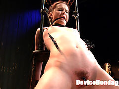 Pig : Annabelle Lee is as cute as they come. Her youthful face gives us the illusion of far deeper fantasies. In scene one, pig is trapped by the neck in a standing stock. Her shoes are drilled into the floor and she is handcuffed. She earns the name pig by her snorting laughter when she is tickled mercilessly. This earns her a pig nose, pig tails, and a pig butt plug. Second, pig is bent into a challenging back arch. Claire takes advantage of Anabelles tiny bush tormenting her with the mean black clips all over her cunt hair and then ripping the clips off. Third, pig gets her fuck hole greased and primed to be pummeled with the fucking machine. Her incredibly sensitive feet get tormented with the tazapper and more tickling. Her orgasms are so intense they seem almost painful. Cum watch this bitch repetitively explode and surrender to unforgiving metal, wood, and leather.