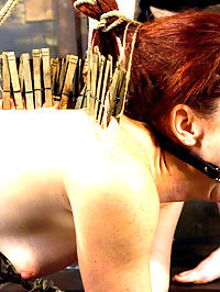 Trinity Post returns to Wiredpussy for an explosive update with Claire Adams : Trinity Post is not only gorgeous and flexible, shes also one of the dirtiest sluts around. Claire Adams verbally humiliates this redheaded slut while she is tied helpless in bondage with her tits clamped and her pussy wired. She is then put in an inverted suspension which leaves both her holes open to be stuffed with electric metal plugs. She cums uncontrollably upside down until she is begging for the pleasure to stop. But of course, that isnt enough to satisfy this little bitch, so Claire strap-on fucks her in the ass and sticks a fist deep in her pussy. And that is just the first three scenes!!!!