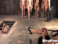 COLLECTION PART 2 Jiz Lee : In this installment of the Collection series Princess Donna picks another slut to add to her collection of slaves in the basement. She and Syd Blackovich test and train this new initiate then throw her in the cage with Vai so she has someone to keep her warm.Stay tuned to see who will be next!