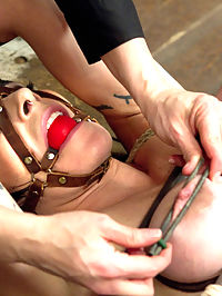 Annika Returns to HogTied : Welcome sexy Annika for a round of tough endurance bondage on HogTied.com. Claire has no sympathy for Annika and right off the bat binds her in a kneeling spread eagle. Annikas dress gets tit holes cut out and her breasts are bound with twine. A crotch rope is added and she is pulled into a very tough kneeling back bend with her hair and tender cunt being pulled in opposite directions. Claire assaults her tits with the tazapper and gets this horny bitch to cum right through her tight crotch rope. Second, Claire binds the former ballerina in a one leg up precarious tie with her heels on and a nice butt plug. Given the dynamic nature of the tie, Annika is made to twirl and follow Claire around as her nipples are tugged in whatever direction seems the most painful. Finally she is hoisted into the air and milked for her cum. In the last position, horny Annika still needs her holes filled and violated. She is bound on her back with challenging breast bondage. Her breasts are bound with leather then squeezed tightly together with wood poles lashed together with rope. Her ankles are bound with leather and attached to the spreader bar. Annika gets plenty of time to be acquainted with an intense tease session with the tazapper and relentless orgasms. Labial clamps spread her cunt nice and wide making it impossible for her clit to hide. Again and again this bitch cums... everywhere... into oblivion.