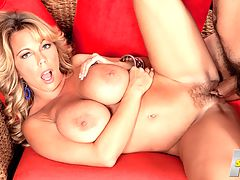 Amber Lynn Is Bach In The Saddle Again : So. James, have you ever had an older woman before? asks ultra-MILF Amber Lynn Bach as she rubs her future fuck partners thigh. No? Thats such a shame.br br It wont be a shame for much longer, says Amber, dressed in a tight, strappy dress and skyscraper heels, her titty mounds threatening to snap the thin straps. She takes his hands in hers and rubs her big boobs with them. He squeezes her knockers and gets to know them. Thats such a good boy, whispers Amber. Pull my titties out. Suck on those titties. Pinch my nipples. He reaches down to rub her pussy. As a swinger and porn star, Amber has had many cocks in her life. She wants a new one and when she wants a new cock she gets it. Let me see your cock.br br He drops trousers to show Amber his pitched tent. Some women can give a guy a boner just by being in his space and Amber is one of them. Shes eager for it now that shes seen the hard-on shes created. He leans back and Amber gets down to working the pole with her experienced throat and swirling tongue. She drools and spits on it, bobbing up and down as he plays with her pussy from the side, his thumb masturbating her clit.br br As he stands up, Amber kneels before him and sucks him again, gripping the base with her right hand, her left hand at her side so the view of her big hanging tits isnt blocked. Once her taste for cock has been temporarily satisfied, Amber wants to get fucked. Her human dildo is eager to fill the position. Busty iSCOREi MILFS dont come any hornier than Amber Lynn Bach. Watch as she scores another hot scene.