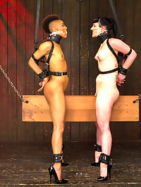 Nikki Darling and Katharine Cane - Complete Edited Live Show : Nikki and Katharine are two of our toughest models and their live show was a solid example of what these bitches can take. In scene one they are bound in identical rigs and both get to face one another riding the wooden pony. Nipple torment, tickling of the feet, and single tail are all on the menu. Their gags are the panties from the other girl and these helpless bitches are worked up into a frenzy until they are finally fully suspended by the board nestled hard in their crotches!Second, both girls give us their best spreads, face up and face down. Nikki is on top and Katharines face is right at pussy height. Katharines whole objective is to be a good cunt licker and get discerning Nikki off. The bitches are tormented with canes and rubber bands and Katharine is given an intense breath play predicament and pussy hook. Both are made to only cum at the same time. The pressure is on for each cunt to be a good fucked whore.Finally we revive a DeviceBondage classic position - the double sybian. Both Katharine and Nikki are bound for an intense joy ride and neck play predicament they will not soon forget. Both Mz Berlin and Claire Adams work the girls over with pain and pleasure. This is Nikkis first time on a sybian and we get to observe what her surprise and awe is over the intense vibration. Keeping up score, the sybian adventure does not end until both girls have cum the same amount. The other has to keep riding in torment!