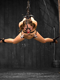 Girl Next Door and AVN Award Winner Remy LaCroix Returns : Welcome back and congratulate AVN award winner Remy LaCroix for this years Best Starlet and Best Tease awards! Remy has an amazing body and great attitude. The ultimate girl next door gets a smack down today on Device when she learns how unforgiving our bondage predicaments can truly be. First, Remy is bound standing with her arms above and ankles locked together in a stretched out bow pose. At first she has no arch, but as the scene progresses her bondage gets more and more restrictive. What Remy fails to mention is that she has a deep fear of the single tail. You can see her terror in the way she moves, desperate to avoid the pain. She is worked over. Almost immediately her eyes welt with moisture. To reward her efforts, Claire adds a suction tube to Remys clit. She mentions in the interview she cums easily... after it has time to draw all the blood and sensitivity to the area, the tube is removed and the vibrator introduced. Remy cums fast, hard, and intense... just the way we like it.Second is a very short but very intense scene. Not every body is designed to take every position, and the hairpin is one that is exceptionally hard for Remy, but we want to see her suffering and her eroticize the pain. Remy is bound laying on a reclining board with metal shackles on her forearms and wrists, and leather binding her to the board and her ankles above. Time is limited and we go for gold. Immediately a dick with a vibrator is in her cunt. Her eyes roll back with pleasure. Then another in her ass... at the same time. Orgasm after orgasm keeps cumming in her intense and uncomfortable bondage double penetration ordeal until she cant take it anymore. Finally Remy is bound in a face down and spread leather strap suspension. She is paddled, flogged, nipples suctioned and hand delivered a staggering amount of orgasms. Again the bondage is extremely challenging for her, but she perservered and ultimately rewarded with pl