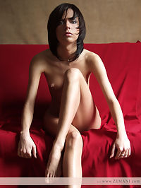 Light. Part 2 : Very beautiful brunet poses nude on the red coach.