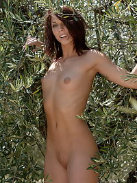 Nikita : Cute posing of Nikita at the olive grove hiding behind the trees and showing just about what we want to see