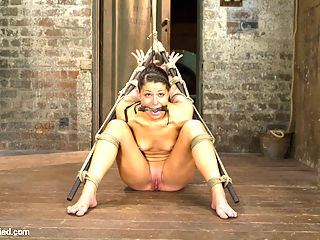 Bringing Home The Gold : Welcome Mia Gold. Tough, tenacious, and a bundle of fire.We start with her standing in a simple box tie. Claire challenges her with the cane, spanking her ass... seeing what this girl is like. Endlessly, this wanton slut moves so much in the bondage that the first and foremost goal is to immobilize the bitch. Mias leg is bound and stretched wide with uncomfortable toe bondage. The rest of her is pulled in the opposite direction, discouraging movement. She desperately tries to get away from the dick inside of her, but the tight and restrictive bondage makes it impossible.Second, she is bound in a strict strappado with bamboo poles. Her back, ass, feet, and cunt are flip catted, but really we are after the cunt. Claires hand slides swiftly into her cunt and this whore cant help but cum... again and again.Finally, Mia is bound in a challenging hogtie. Since she is a squirm-er, Claire has no intention of letting this cunt off easy. Its all about the ass. A nice thick cock is pounded in there and with no clitoral stimulation, this bitch is ass hungry. So ass hungry she cant stop cumming... its an ass addiction. Suspended in the air, she is left to suffer in an intensely uncomfortable position.