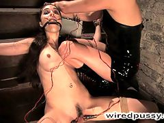Sasha Grey Subs to Princess Donna on Wired Pussy!!!! : Another amazing Classic Archive shoot. The famous Sasha Grey subbing to our infamous Domme, Princess Donna!Even at the tender age of 18 Sasha Grey has proven herself one of the dirtiest and most desirable performers in the adult industry today. Today Sasha gives herself to the wiredpussy experience, getting tightly bound, shocked and made to cum. Just a couple seconds of this update will show you why this girl is so in demand. Dont miss it, Sasha is one sexy girl!