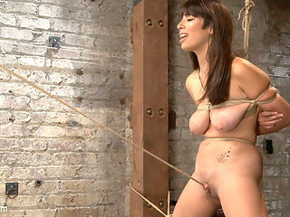 Smashing Brand New Big Tits, Beautiful Pussy : Nina Lopez brings a giant set of natural guns to HogTied, and come to find out her pussy is Fucking Beautiful! Especially when the ropes are ripping her pretty pink cunt lips apart to reveal that big, fat, pulsing pink clit. I can resist vibrating the shot out of that fresh young twat, and she rewards me by squirting her girl come all over my fucking pants.