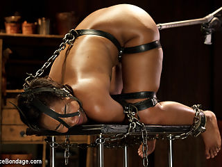 Ebony Slut is Tormented and Machine Fucked!! : Chanell is super sexy and is all about getting her ass beat in bondage. She loves to be restrained and have a big mean man have his way with her. Today is Orlandos turn and he has suffering on the menu for this ebony slut. Her body is abused with a multitude of impact and torment. Her pussy gets destroyed by constant attention from him and then from Omega. This dirty slut gets exactly what she wanted.