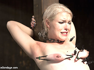 Young, Blond, All Natural Pain Slut gets a Full Dose of Brutality!! : Ella came in asking to be annihilated. Orlando likes a good challenge, and puts this newcomer in grueling devices, and takes the pain meter up to 11!