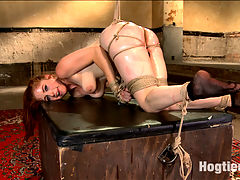 Penny Pax Gagged and Double Stuffed : Gorgeous Penny Pax is suspended with a vibe tied to her pussy, sending her into overwhelming orgasms right out of the gate. Once we get her down she is begging for more so she is tied doggie style, ass spread wide open to receive the 11. This is just a warm up to the final double fucking she is to get in the last scene.Dont miss this super hot anal slut taking it hard for us in the tightest bondage on the web!