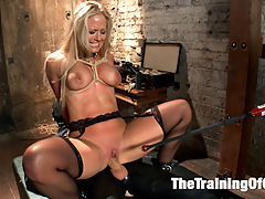 Anal MILF Training Holly Heart Day 3 : Slave wannabe Holly Heart is shaping up to be quite the little anal slut. This MILF doesnt disappoint, shes done her homework and shes learning the House Rules. Still she needs some work, a cattle prod or two to the pussy will keep her in line until she takes the gimps huge cock in her ass with gratitude. Youre improving, Holly, but theres still work to be done.