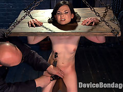 Girl Next Door is Bound and Tormented Like a Whore! : Self proclaimed anal slut gets her first taste of extreme bondage at the hands of Sgt. Major. she is belted on the floor and Sarge enters to show this little slut whos boss. After rubbing his cock on her helpless little pussy, she is hoisted into an inverted ankle suspension, where he torments this slut.All of her weight is resting on her cunt and her head and wrists are locked down with massive stocks. Again, this slut is tormented until she can take no more, and then her willing cunt is made to cum at his will.Now she finds herself face down and spread eagle on the floor. There is more torment before an ass hook is shoved in her tight ass. Then her cunt is filled with a dildo and fucked into oblivion.