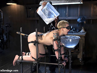 Recipe for Disaster : Start by taking a willing pain slut. Add in brutal device bondage, then a heavy helping of torment. Sprinkle on some screaming orgasms, and you have an amazing shoot. Make the bondage more excruciating as the day goes on, and keep adding a variety of pain and suffering. Throw in a splash of dunking while shes blindfolded, and you end up with one of the toughest shoots Elizabeth has ever had to endure.