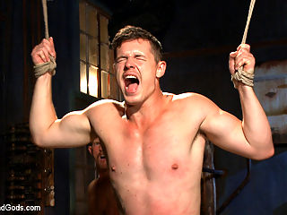 New captive bound, beaten and electrified : Adam Herst has another captive in his lair and this time its the muscle bound stud, Jed Athens. Blindfolded and fully bound, Jed is stripped down. Adam teases the mans cock through his boxers and clamps his teeth down on his hard on. He makes the new slave suck his cock and delivers a hard flogging with Jed tied to the ceiling. Anxious to get at the hot studs hole, Adam fucks him where he stands before administering an electro challenge. Jeds freshly fucked ass takes the electric butt plug and makes him squirm in agony with Adams cock in his mouth. A final fucking leaves Jed covered in both the mens loads and left alone in the bondage for Adam to use him again at his will.