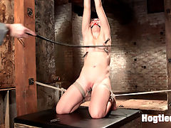 Mandys Anal Bondage Fantasy : Its a sin to have an ass that fine, but HogTied can redeem Mandy Muse and make good use of her beautiful bottom. Sarge does his signature crotch rope work then goes to work on Mandys big ass. Mandy is vibed to orgasm after orgasm while getting anal penetration, suspended, gagged, clipped, whipped and fucked with dicks on sticks.