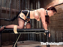 Anal MILF Syren de Mer Earns Her Final Marks : Hardcore Anal MILF Syren de Mer learns to process pain while getting fucked hard in the ass. Huge toys stretch the submissive MILFs tight asshole, and hard nipple clamps twist her nipples painfully as the huge cock pumps her plump, round ass. Slave MILF Syren begs for cane strokes and her pussy longs to wear the traditional mark of a slave Welts. The cane cuts the air and welts the soft mound of her cunt. Syrens Huge Tits bounce as she is fucked hard in the ass, and the cane cuts a sure welt across her tender tits, leaving a raised welt in its wake.Hard, thick cock is shoved down her slave throat and the plug stretches her tight slave ass. Bondage ropes dig into her ass, opening her gape for all to see. Clothespin zippers tear at her cunt and nipples as the cock reams her tight, spasming asshole. The Slave MILF pleads and begs with her eyes, but only gets more cruel treatment till it is time to beg for the come.