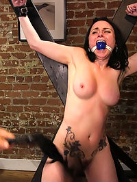 The Shy Girls Anal Submission : When shy and apprehensive Veruca James accepts a gift from her seemingly gentle boyfriend Derrick Pierce, she has no idea what shes getting into. A seemingly innocent gift is her introduction to the world of BDSM. Veruca is bound tight and face fucked with gagging blow jobs by her sadistic partner. The shy girl is made into a quivering submissive mess after a round of rough ass pounding, hard corporal punishment, and relentless orgasms.