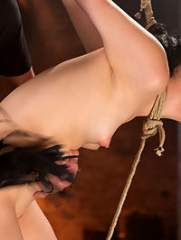 Petite Brunette is Captured in Bondage, Tormented, and Made to Cum : We open with sexy slut struggling on the floor. We watch her as she tries as hard as she can to escape with no luck. Her clothes are removed and she is manhandled on the floor before she is made to cum. We take the rest of the day exploring her limits and boundaries, being careful not to go too far, but rather ride that fine line between the two carefully. She is put in her first suspension ever and shown through punishment what suffering really is.