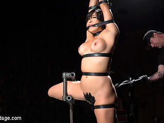 Asian Assault : Mia gets fitted for the devices that will be restraining her upon her arrival. Thew final adjustments have been mad and now its time to lock her into them. The first has her standing with one leg pulled up and her hands above her head. The next has her in a doggy position and the final one has her in a back bend on the floor. All of them were designed to expose certain parts of her body so that were easy to access and torment. All of them had a purpose and all of them served their purpose