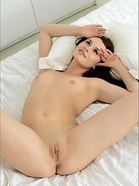 Celine Bedspread