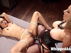 The Return of Annie Cruz!!! : Annie Cruz returns to Whipped Ass with hot domme Cherry Torn for a classic, orgasm filled, lesbian dungeon session! Cherry welcomes Annie back with tons of spanking, flogging, face sitting, finger banging, dick on a stick and pussy and anal strap-on fucking!