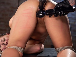Pain Slut Suffers with a Smile in Brutal Bondage : Holly Heart makes her long awaited return to Hogtied and she looks better than ever! I quickly tie this slut up and get to work tormenting her with everything I can get my hands on. The more punishment she gets the more this bitch smiles. She truly loves to suffer, so I give this eager little pain slut what she wants. The day is spent exploring different ways of hurting her to see if we can find a new sensation for her. We found several new types of pain that she has never endured, which is amazing to watch as she suffers through them.