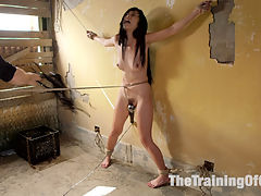 Sexy Japanese Marica Hase Trained for Deep Anal Submission : Cute and sexy Marica Hase is eager to endure the rigors of rough handling, Japanese style rope bondage, discipline, hard blow jobs, pussy pounding fucking and deep anal sex.