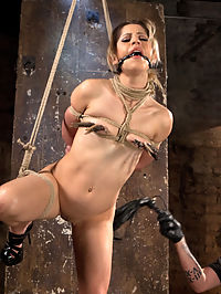 Cute LA Porn Slut in Brutal Bondage and Abused then Made to Cum : I know Goldie is capable of getting fucked up and dealing with the pain. I know that she enjoys the suffering while in tight bondage. Having this knowledge makes it easier for me to get in her little head and play my games. The day starts with brutality and and maintains that level of abuse for the entire day. Goldie is used like a cute little piece of meat with her flesh an my stomping ground for whatever I want to do to her.