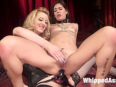 Date Night With a Dominatrix Lesbian couple submits to Cherry Torn! : Young lesbian couple Kacie Castle and Cadence Lux decide to spice things up in the bedroom and scheduled a dungeon session with dominatrix Cherry Torn! The action filled encounter includes caning, spanking, flogging, suspension bondage, finger banging, pussy and anal strap-on fucking, strap-on DP, tons of pussy licking, and squirting orgasms!!!