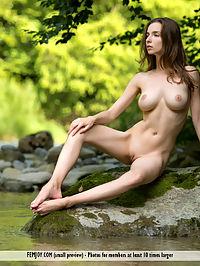 Nymph : Mariposa