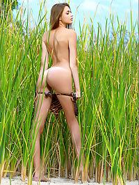 Elle Hiding in the Grass