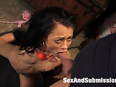 The Debt Collector : When Holly Hendricks borrows from the wrong guy, Ramon Nomar collects his debt out of her ass. Hot anal beauty Holly Hendricks struggles against Ramon Nomars sexual domination but she cannot escape a brutal ass pounding in suspension bondage. This update includes great rough anal sex in tight rope bondage, gags, rough blow jobs, good vaginal fucking, suspension bondage, legs speared wide, and heavy physical domination all wrapped up in a dark story line.